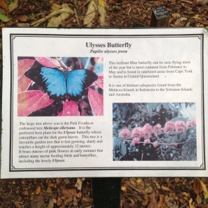Taking photographs of the signs at the Cairns Botanical Gardens has been immensely helpful in my research.